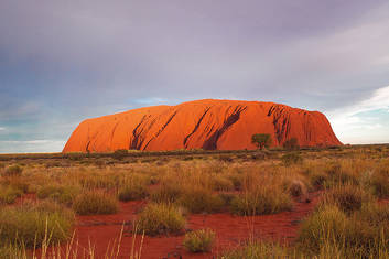 Ayers Rock to Kings Canyon Transfer (Y23)