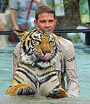 Tiger show at Australia Zoo